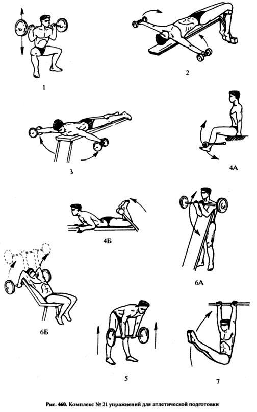комплексы упражнений с гантелями в картинках такое ключ